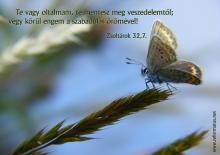 Zsoltárok 32,7